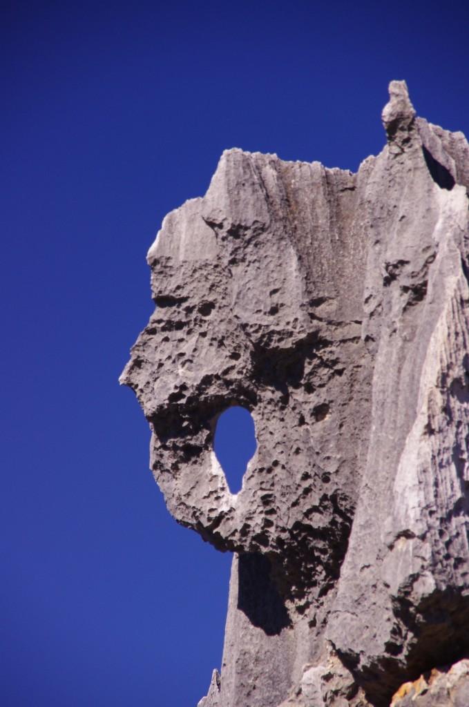 Shilin Stone Forest: Der Elefantenfelsen - keine Ahnung, wie jemand auf diesen abwegigen Namen kommen konnte.