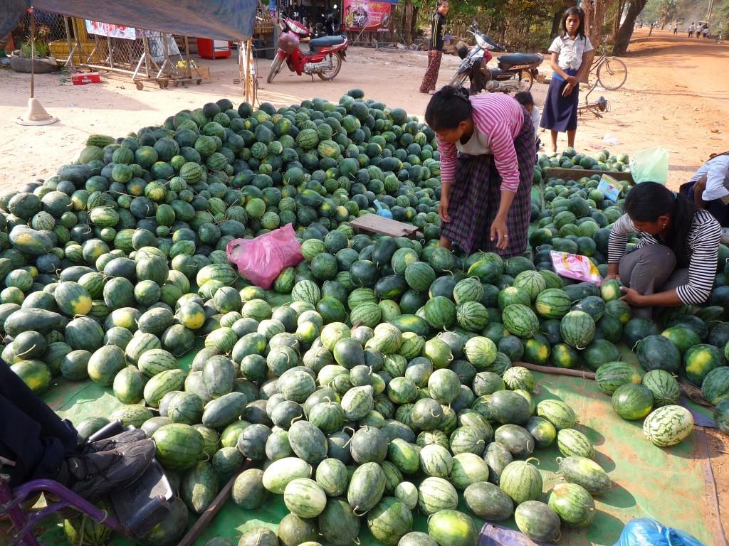 Auf dem Weg kann man sich ja noch eine Melone mitnehmen. Die sind, wie ja deutlich zu erkennen ist, nach Größen/Preisen sortiert. 30 mittelgroße Exemplare kosten ungefähr 8 US$.
