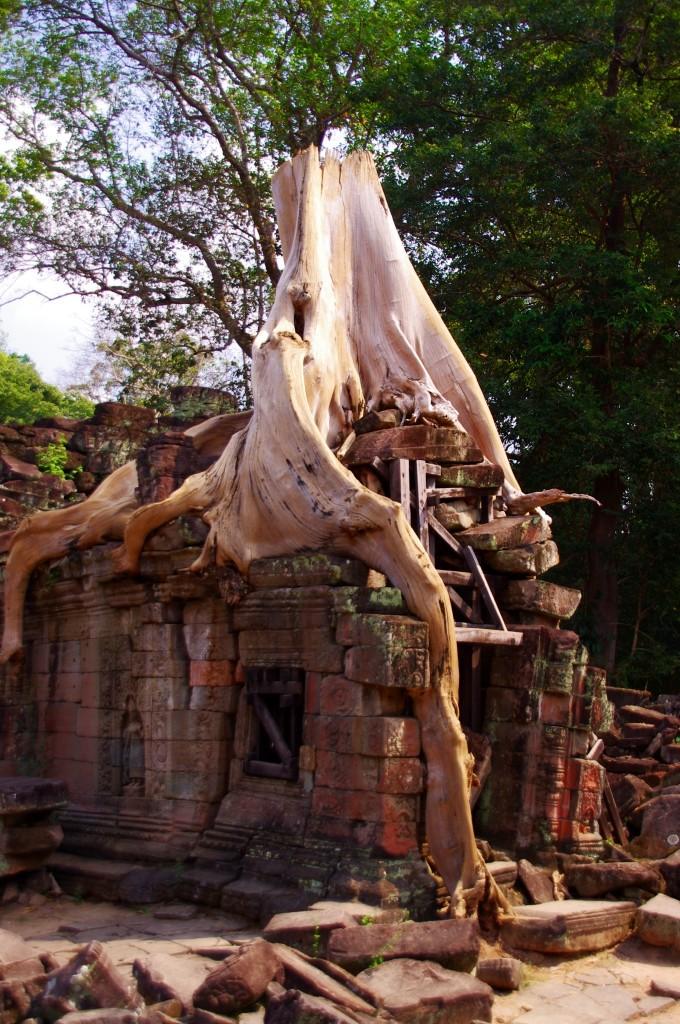 Die kleineren und weniger frequentierten Tempel halten oftmals auch ein paar schöne Motive bereit.