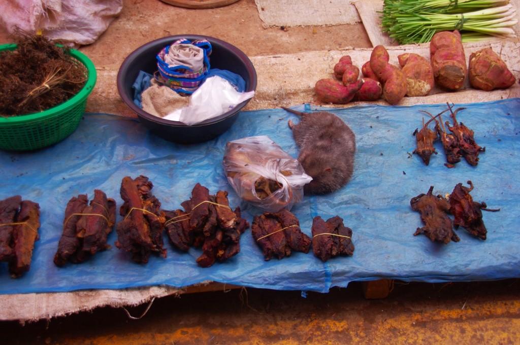 Man weiß garnicht, was man als erstes essen möchte. Von Ratten über Mäuse und anderen Nagern zu den Kartoffeln. Diese Palette an Köstlichkeiten lässt ja wohl keinen Wunsch offen.