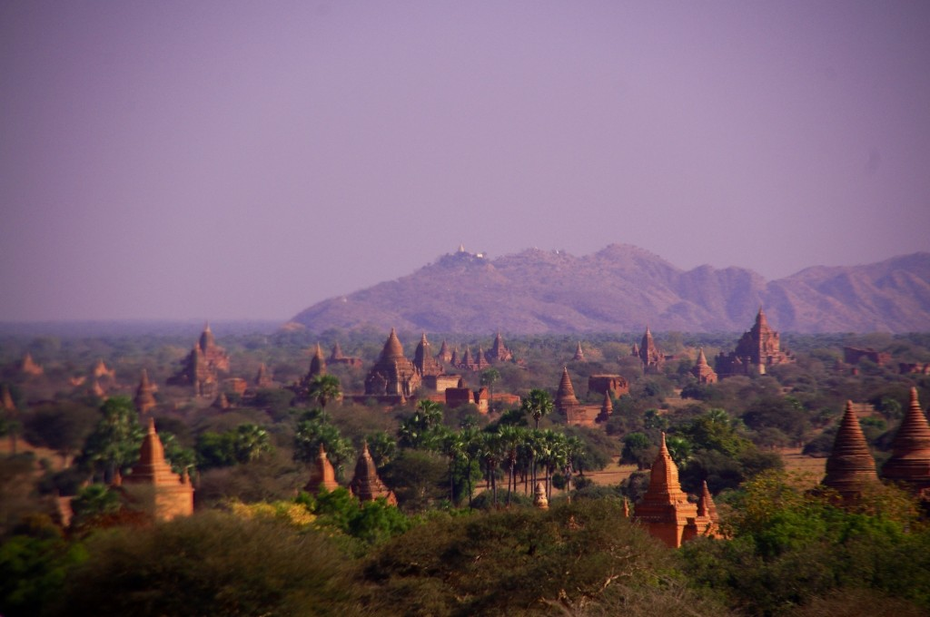 Bagan: Ein schöner Überblick auf das sehr große Gebiet mit seinen unzähligen Tempeln.