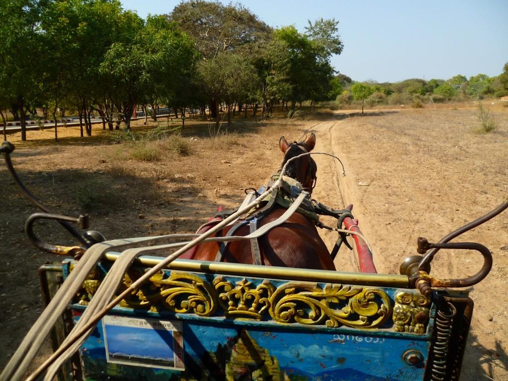 Bagan: Am bequemsten erkundet man das Gebiet im Pferdewagen.