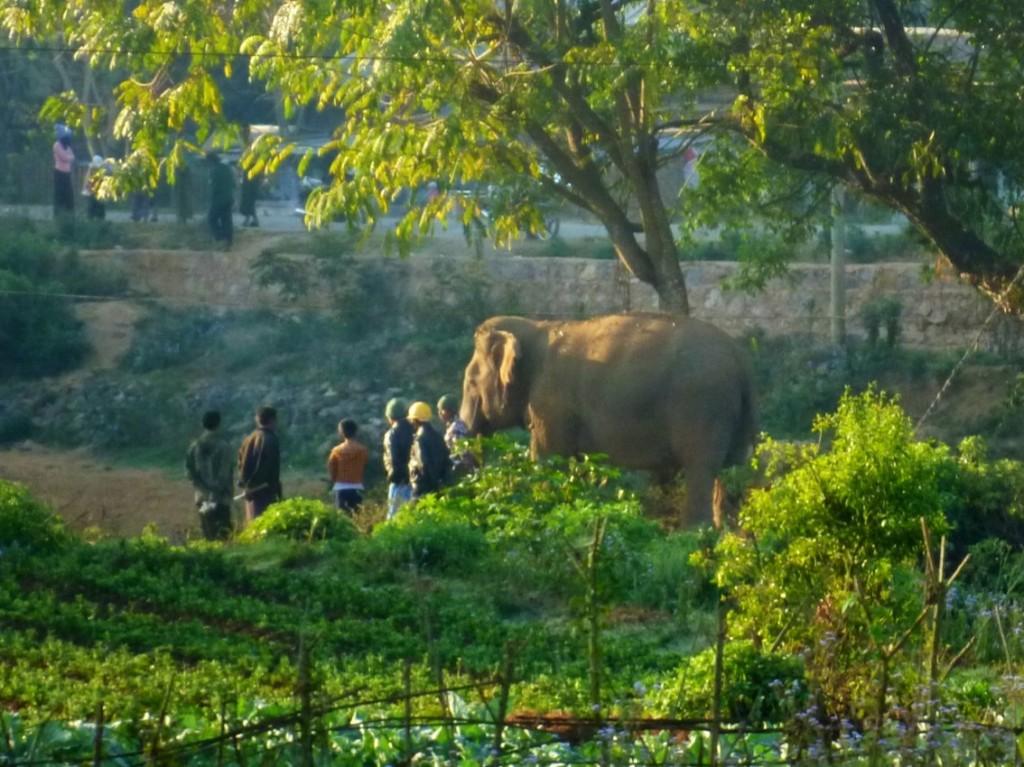 Hsipaw: Ein Arbeitstrupp auf dem Weg zum Dienst