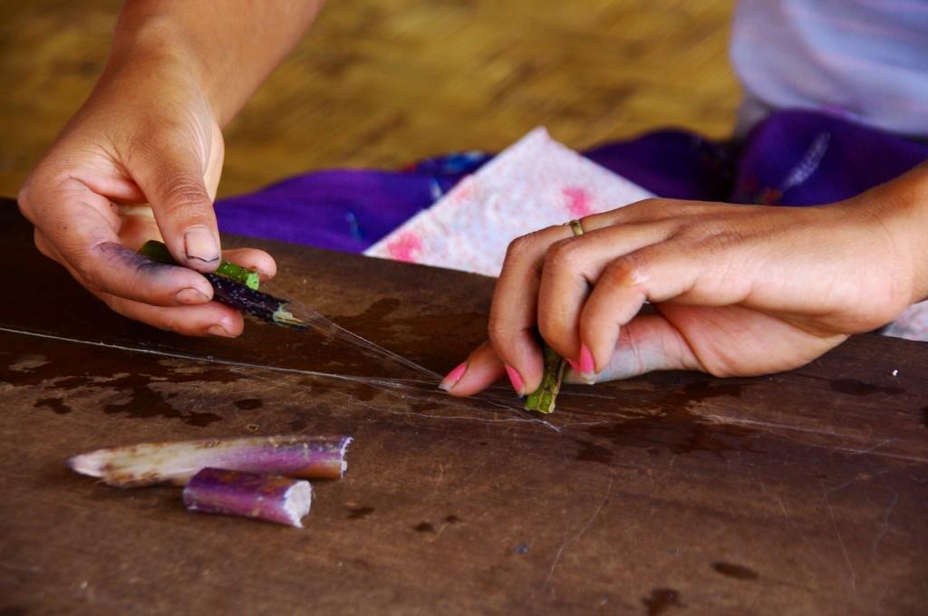 Inle-See: Das ist der Grund, warum Bekleidung aus Lotus etwas teurer ist. Hier wird gezeigt, wie die Fasern mühsam aus den Stengeln gewonnen werden.
