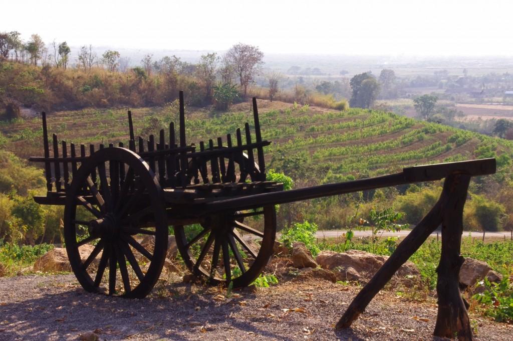"""Das Wein-Gut """"Red Mountain"""" am Inle-See produziert einen sündhaft leckeren Sauvignon-Blanc...mit einer passend leichten Maracujanote, wie wir finden."""