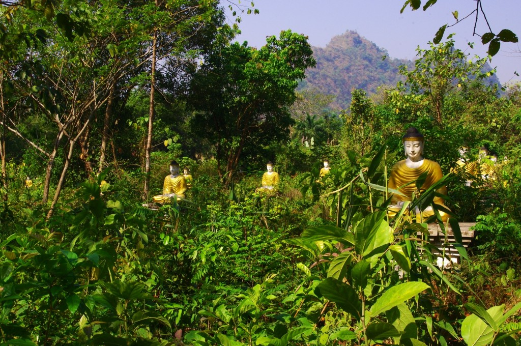 Mount Zwekabin: Am Zustieg zum bekannten Pilgerberg stehen über ein großes Gebiet verteilt ca. 2000 Buddha-Statuen.